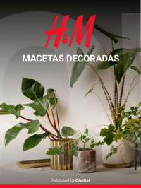Macetas decoradas