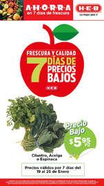 7 días de precios bajos - Monterrey