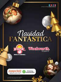 Navidad Fantástica INV - CDMX