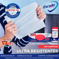 Toallas húmedas desinfectantes