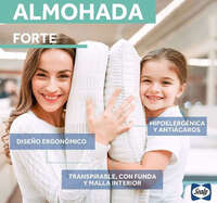 Almohadas Sealy