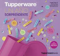 Tupper Tips 17