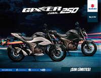 Gixxer GSX250RL