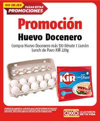 Promoción Huevo Docenero