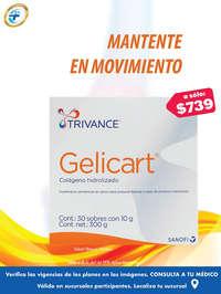 GelicartFP