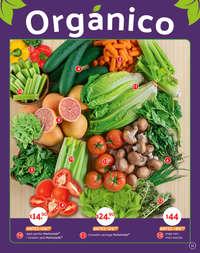 Inicia el año con hábitos saludables