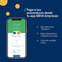 Paga a tus proveedores desde la app