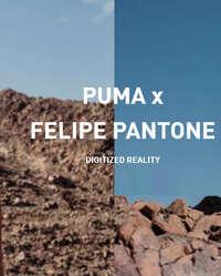 Puma x Felipe Pantone