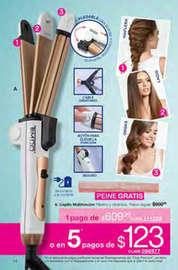 Avon Campaña 06 Maquillaje