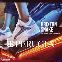 Brixton Snake