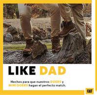 Like Dad