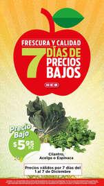 7 días de precios bajos - Querétaro