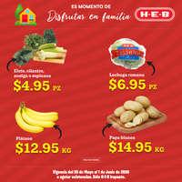 Prensa Especial - Irapuato