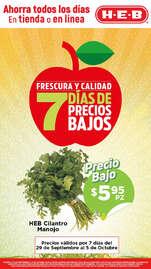 Frescura y calidad - Irapuato