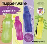 Tupper Tips 04