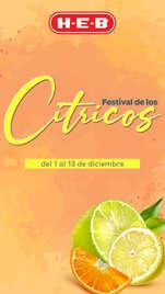 Festival de los cítricos