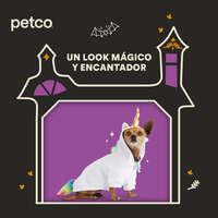 Un look mágico para tu mascota