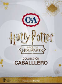 Harry Potter Caballero