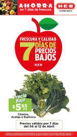 7 días de precios bajos - Torreón