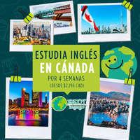 Estudia inglés en Cánada