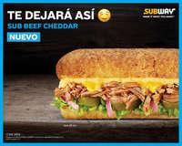 Nuevo sub beef cheddar