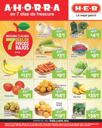 7 días de precios bajos - Irapuato