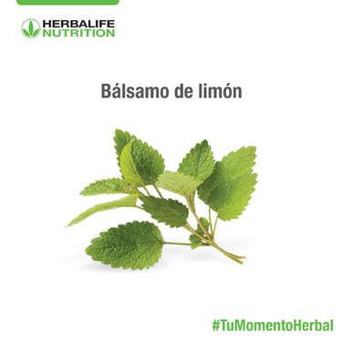 #Tumomentoherbal- Page 1