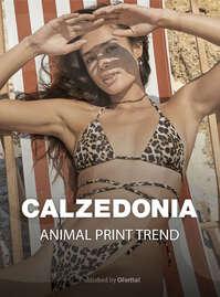 Animal print trend