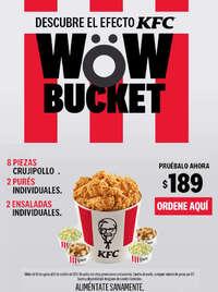 Wow Bucket