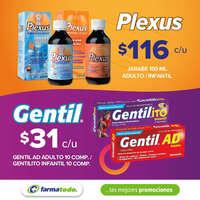 Gentil - Plexus