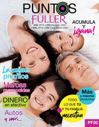 Puntos Fuller