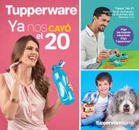 Tupper tips 1