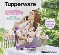 Tupper Tips 03