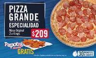 Pizza grande de especialidad