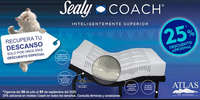 Sealy coach