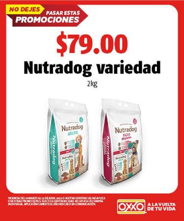 Nutradog- Page 1