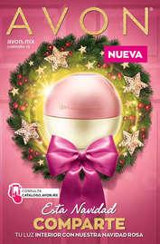 Campaña 19 Navidad