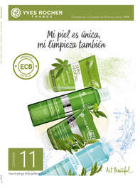 Campaña 11