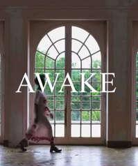 Nueva Colección Awake